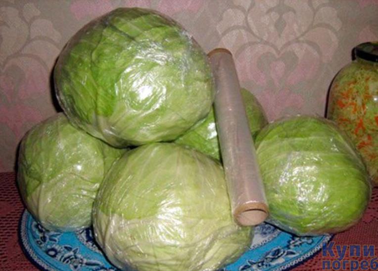 Условия хранения капусты